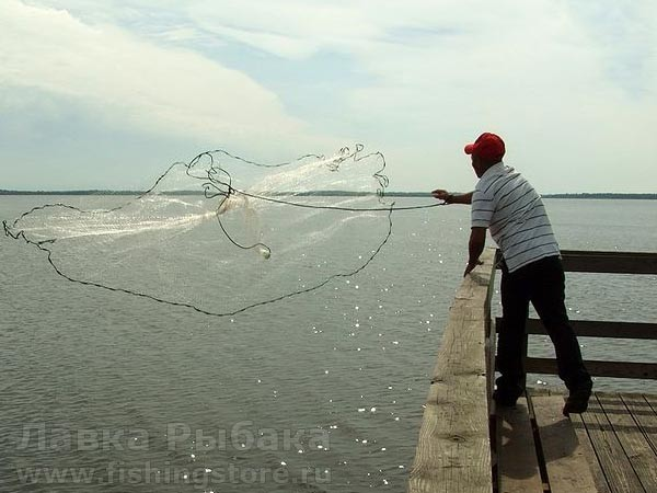 разрешено ли ловить кастинговой сетью